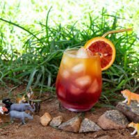 Circle of Life Punch - The Lion King Inspired Drink